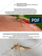 Țănțarii (familia Culicidae).pptx