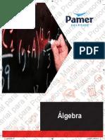 08 Algebra 4.pdf