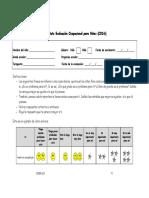 Formatos Evaluacion COSA