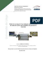 Thèsedeshengolutandulamichel.pdf