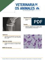 medicina basada en evidencia veterinaria.pdf