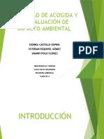 SEMINARIO CAPACIDAD DE ACOGIDA CORREGIDO (1).pptx