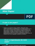 Mini Paper - Sociologia das Organizações - 2019.pptx