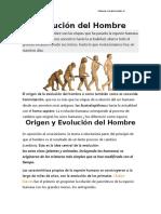 CONTENIDO EVOLUCION
