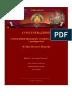 DILGO KHYENTSE - Concentrazione - Zurchungpa