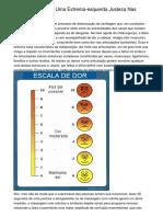 Inflamat?rio Perfeito Destinado a Voc?lpzfc.pdf