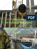 Welcome to Cabbage Hill Farm: Aquaponics Systems