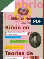RinÞoìn en Herradura