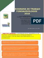 PPT PROGRAMA DE TRABAJO 2018
