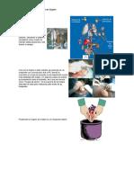 bioetica (1).docx