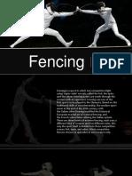 fencing-171011144713