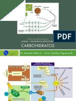 BQ 2020 Clase 2 - Carbohidratos.pdf