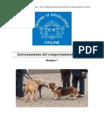 Comportamiento Canino - Módulo 7