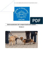 Comportamiento Canino - Módulo 8