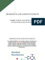 BIOMOLECULA DE ACIDOS NUCLEICOS