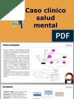 presentacion historia clinica mental