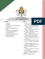 IT 12 - CENTROS ESPORTIVOS E DE EXIBIÇÃO