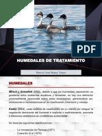 HUMEDALES DE TRATAMIENTO