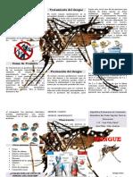 310666331-El-Dengue.docx