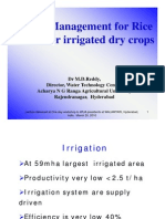 Water Management for Rice and Other Irrigated Dry Crops