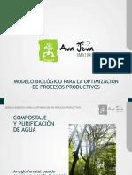 Modelo Biológico  de procesos productivos.pdf
