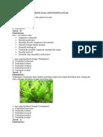 Bank Soal Kingdom Plantae