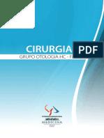 Cirurgias Otologicas.pdf