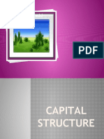 Capital Structure _1