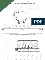 ro-t-l-1085-elemente-grafice-cu-tema-la-ferma-fise-de-activitate.pdf