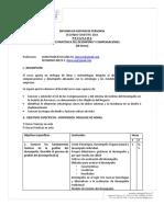 programag.estra.deldesempeÑo_1.doc