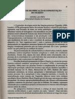 ANGEL PINO - processos de significação e constituição do sujeito.pdf