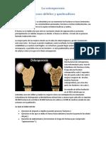 La osteoporosis (1)