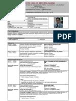 ModeloCV.pdf