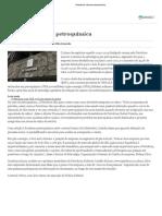 Petrobras retoma petroquímica.pdf