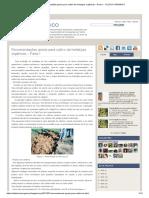Recomendações gerais para cultivo de hortaliças orgânicas – Parte I _ CULTIVO ORGANICO