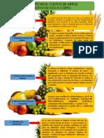 Presentacion. Elaboracion Fichas tecnicas Por Raul Tomson salas Cultivo de Clima Medio