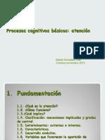 1ª ponencia, procesos cognitivos, atención (2)