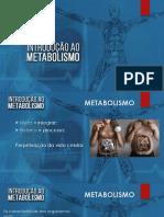 introducao_ao_metabolismo.pdf