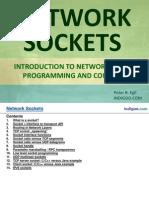 Network Sockets