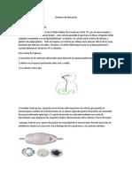 Sistemas de derivación neuro