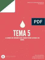 SERIE-7-DERRAMAMIENTOS-DE-LA-SANGRE-TEMA-5