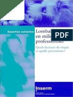 Lombalgies en milieu professionnel  quels facteurs de risque et quelle prévention.pdf