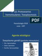 Hemotisulares_Toxoplasmosis