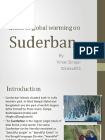 Effect of Global Warming on Suderban