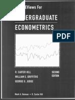 Eview Undergraduate Eco No Metrics