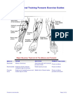 Forearms exercises.pdf
