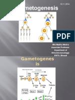 Gametogenesis-.pptx