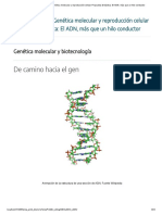 Unidad Didáctica_ Genética molecular y reproducción celular Propuesta Didáctica_ El ADN, más que un hilo conductor