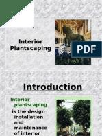 interior landscing