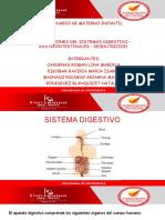 enfermedades gastrointestinales en el niño